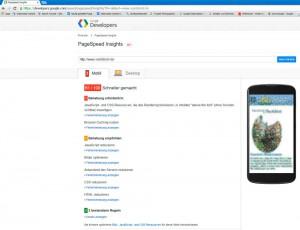 OnPage-Optimierung - Potentiale mit PageSpeed Insights aufspüren