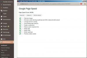 Wordpress Plugin W3T sinnvoll einsetzen